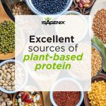 About Pea Protein